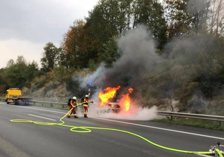 PKW auf der A1 ausgebrannt! - Insassen und Hund retten sich rechtzeitig